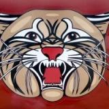 Saint James Wildcats